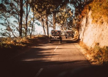Top 5 cars you must opt for on your next road trip